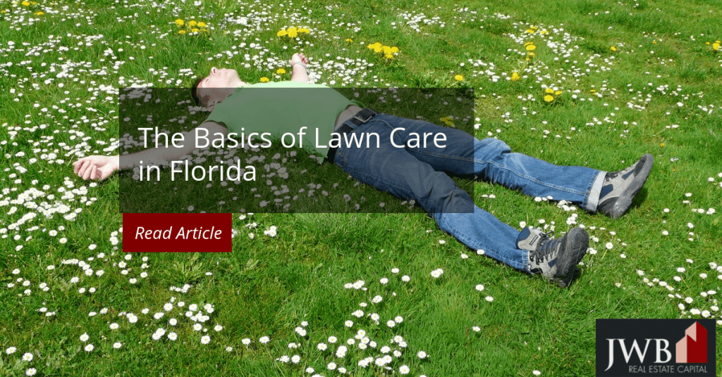 The Basics of Lawn Care in Florida